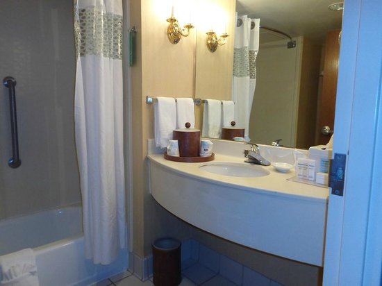Hampton Inn Columbus-North: bathroom