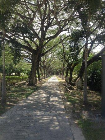 Lagenda Park: Walkway