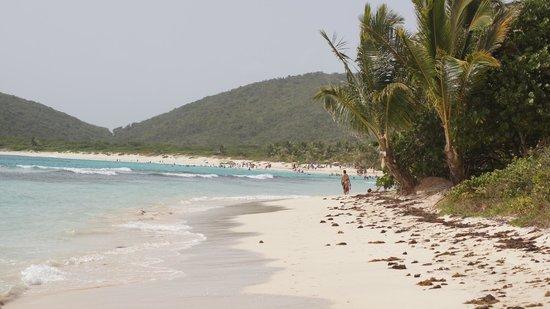 Playa Flamenco: Nice ...As far s you can see...