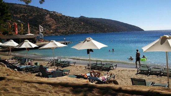 Candia Park Village : Пляж