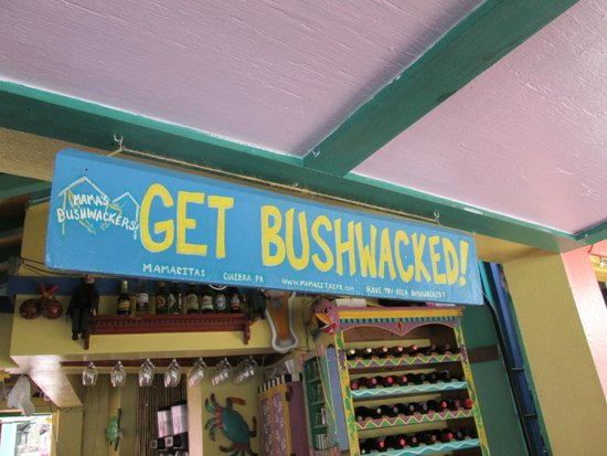 Mamacita's restaurant and Bar: Bushwacker have to try it!!