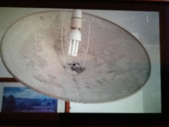 Carlton Residence : this was the light shade full of dust