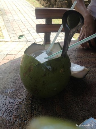 Telaga Tujuh Waterfalls: Coconut Juice for sale down the stairs