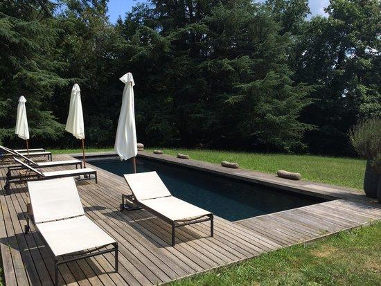 Chateau La Thuiliere : Une piscine très agréable