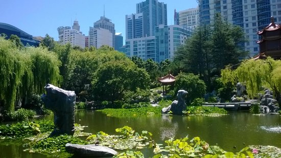 Chinese Garden of Friendship : gardens and city skyline