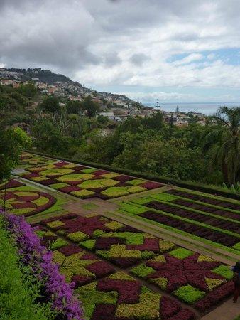 Madeira Botanical Garden: Central carpet planting