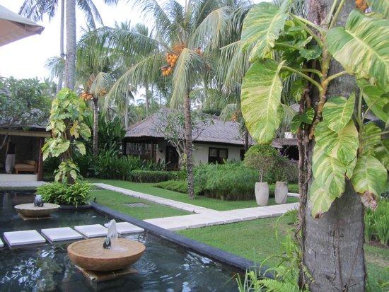 Qunci Villas Hotel: Villas