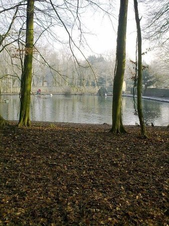 Lake at Kilkenny castle