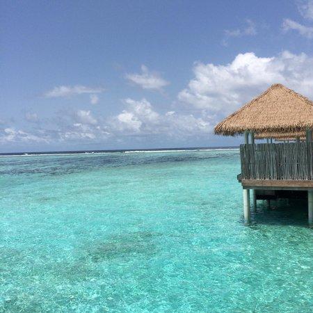 COMO Maalifushi, The Maldives : The clear mesmerizing sea green waters