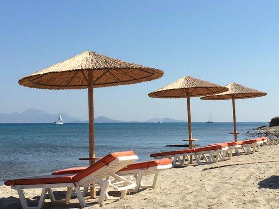 La Spiaggia Picture Of Malibu Beach Bar Restaurant Kardamena TripAdvisor