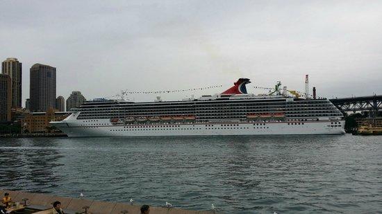 Sydney Ferries: Ничего себе так паромчик