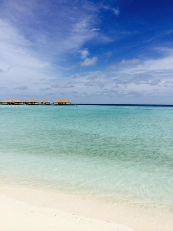 COMO Maalifushi, Maldives : The beautiful sea