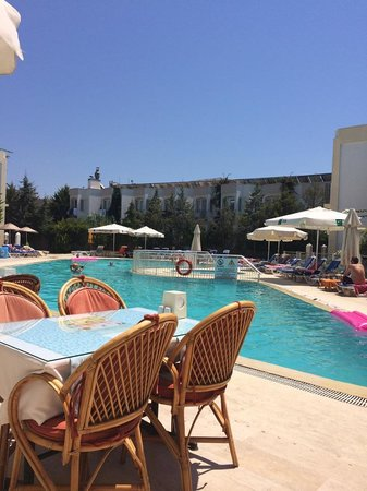 Hotel Serpina : pool area