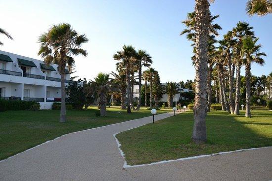 El Mouradi Beach : Vialetto che porta in spiaggia