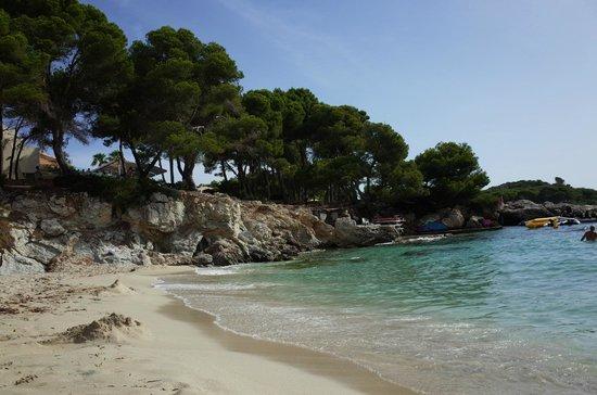 Iberostar Pinos Park: Strand Links - Blick Richtung Meer