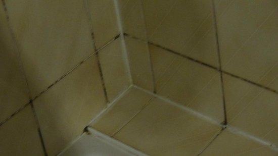 Gites Les Bruyeres d'Erquy : coin de douche pas entretenu