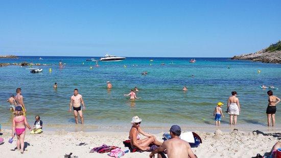 Beach Club Font de Sa Cala: La plage