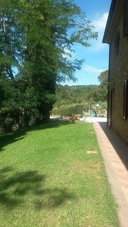 Il Casolare Val di Mare: gazond/uitzicht appartement
