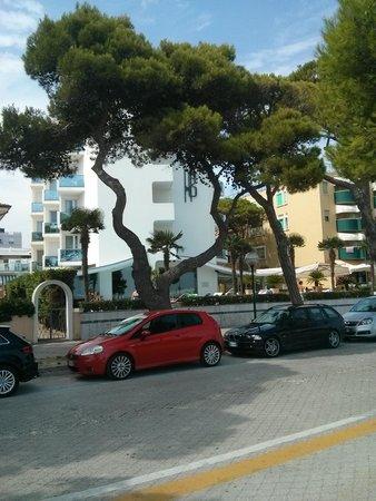 Hotel Bellavista: vista dell'hotel