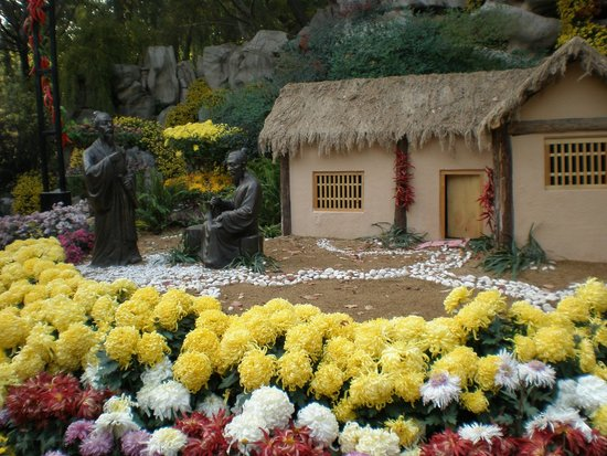 Baotu Spring Park: Chrysanthimum display in Baolu Spring Gardens, Jinan
