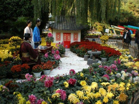 Baotu Spring Park: Baolu Spring Water gardens