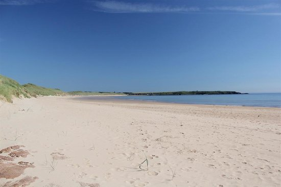 Kilmarnock Arms Hotel: Undiscovered Cruden Bay on the NE coast is as beautiful as anywhere in Scotland