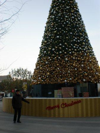 Baotu Spring Park: Christmas Tree in Jinan