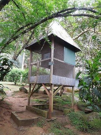 Le Jardin Du Roi Spice Garden: Fruit bat in cage