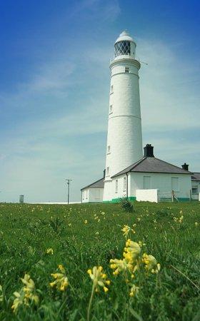 Nash Point Lighthouse: Nash Point