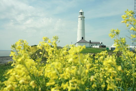 Nash Point Lighthouse : Nash Point