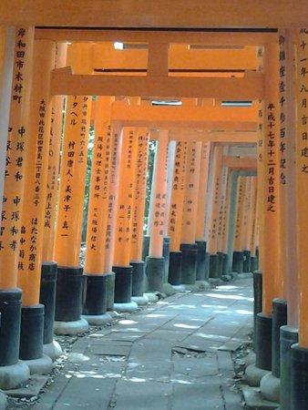 Fushimi Inari-Taisha: Tunnel di porte
