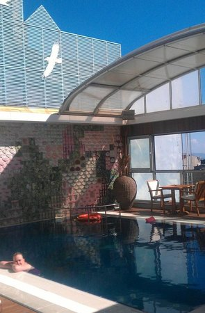 Zagreb Hotel : Roof-top pool