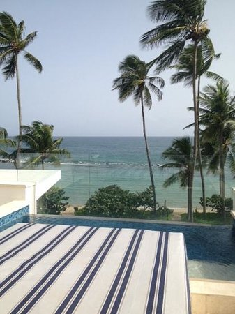 Dorado Beach, a Ritz-Carlton Reserve: rooftop pool view