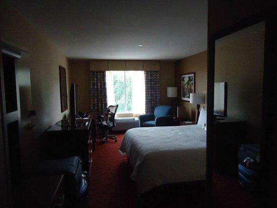 Hilton Garden Inn Ann Arbor: Room view