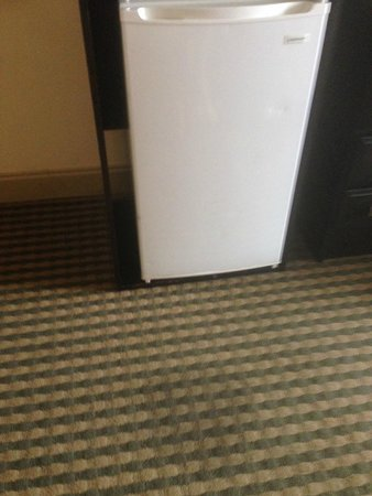 Best Western Plus Atlanta Airport-East : Carpet stain in room