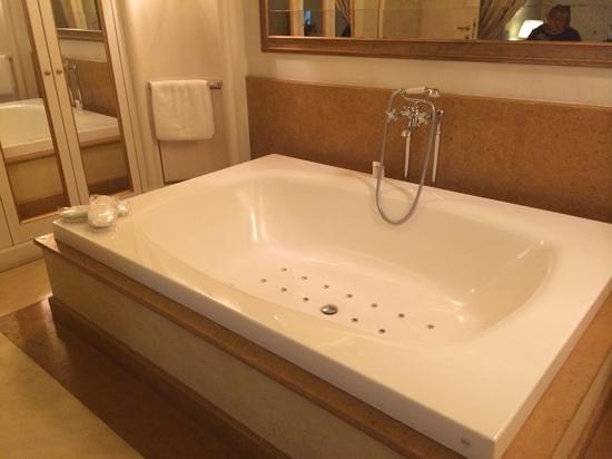 Al Palazzo Del Marchese Di Camugliano: stunning bathroom!