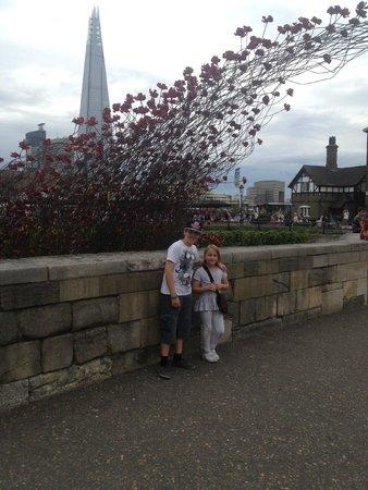 Torre de Londres: Poppy installation for WW1