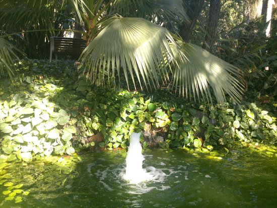 Parque de Málaga: уголок в парковой аллее