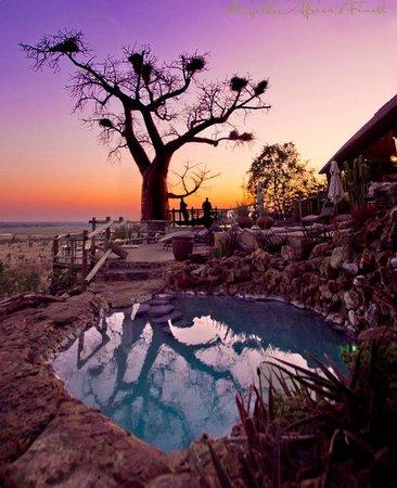 Ngoma Safari Lodge: Swimming Pool area