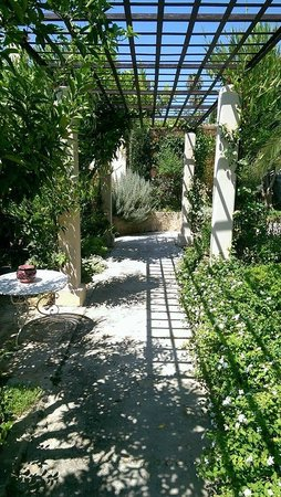 Jardi d'Arta Boutique-Hotel: Garden