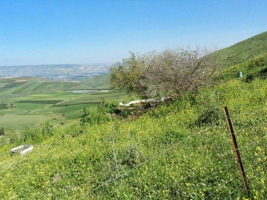 Yavne'el B & B: Area