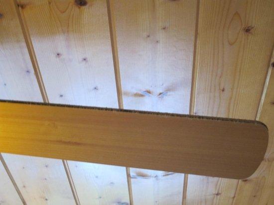 Elk Springs Resort : Dusty Ceiling Fan