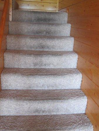 Elk Springs Resort : Dirty Stairs