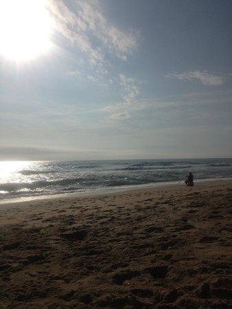 Beach Haven : PARADISE