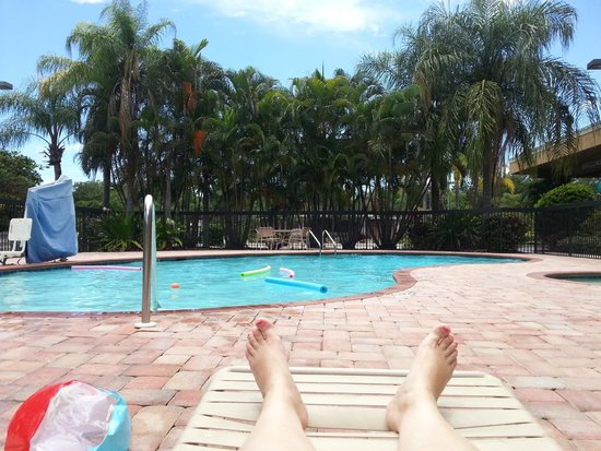 Hampton Inn Sarasota I-75 Bee Ridge: Poolside