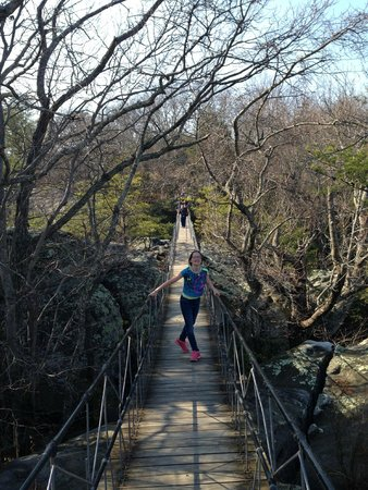 Rock City Gardens: Swinging Bridge