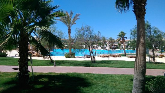 Hilton Sharks Bay Resort: Poolside Room
