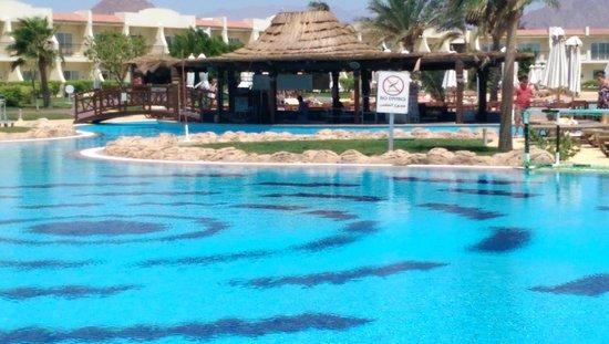 Hilton Sharks Bay Resort: Pool bar