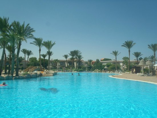 Parrotel Beach Resort : Large Pool