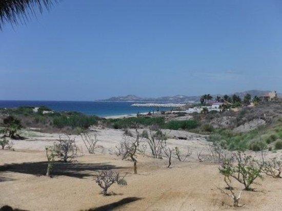 Secrets Puerto Los Cabos Golf & Spa Resort: Desert landscape.